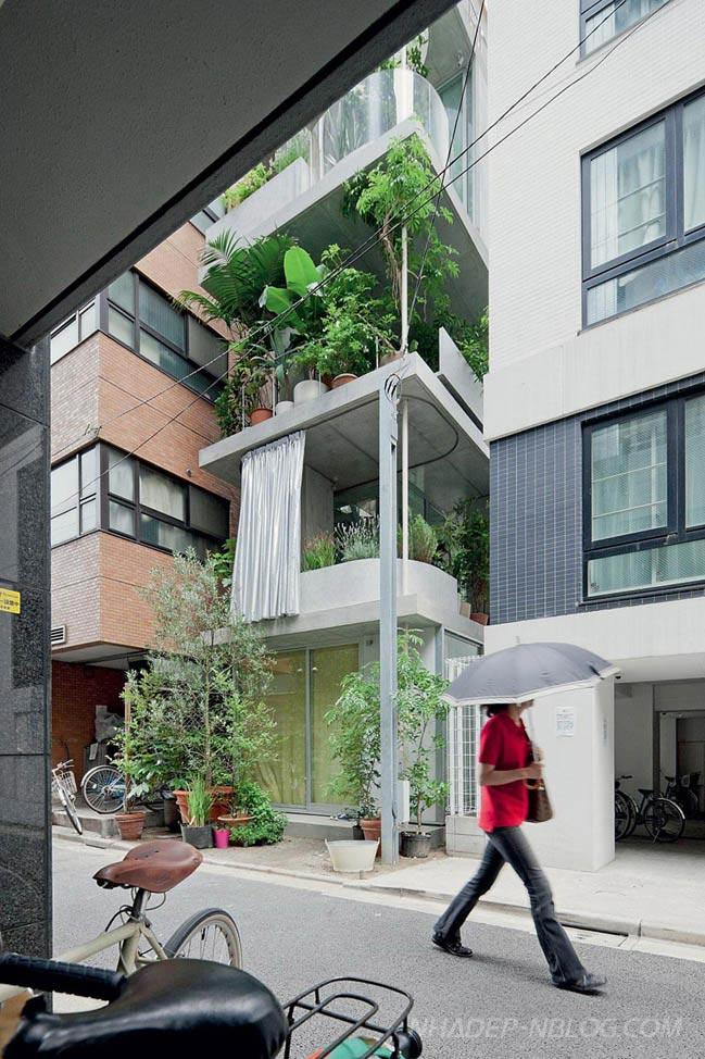 Mẫu nhà phố đẹp 3 tầng tràn ngập cây xanh