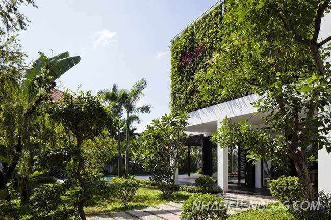Biệt thự đẹp hòa mình với thiên nhiên tại Thảo Điền