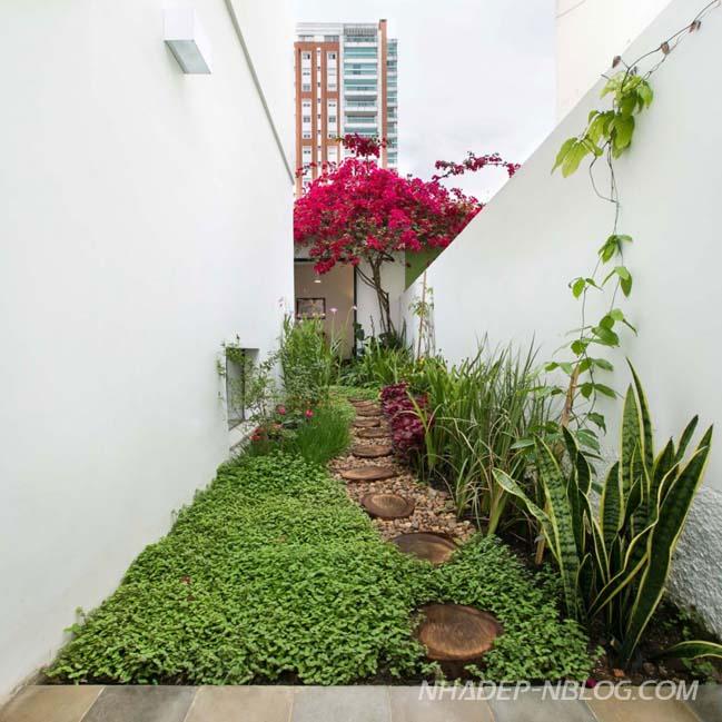 Nhà phố đẹp thoáng mát với khu vườn nhỏ