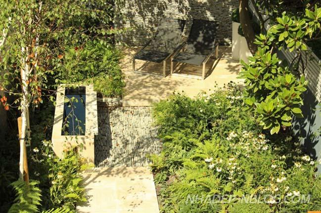 Mẫu thiết kế sân vườn đẹp phía sau nhà