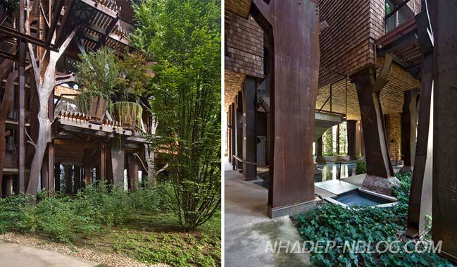 Ngôi nhà phố đẹp được bảo vệ bởi 150 cây xanh