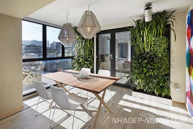 Tô điểm nhà đẹp của bạn với khu vườn đứng