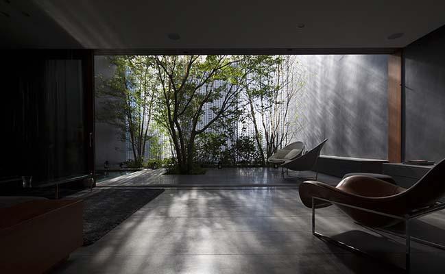 Ngôi nhà đẹp với 6000 viên gạch trong suốt
