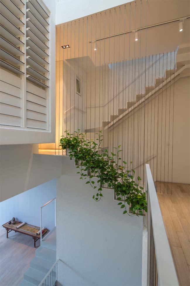 nha pho dep 13 Gợi ý thiết kế nhà phố đẹp tràn ngập không gian xanh và ánh sáng