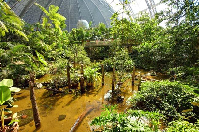 Biến nhà chứa máy bay thành công viên nước trong nhà khổng lồ