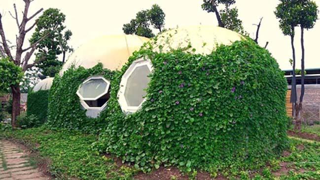 Mẫu nhà đẹp với thiết kế hình tròn độc lạ tại Hà Nội