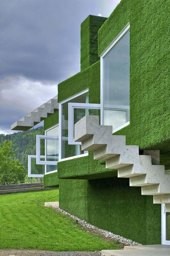 Mẫu biệt thự đẹp được bao phủ bởi cỏ xanh