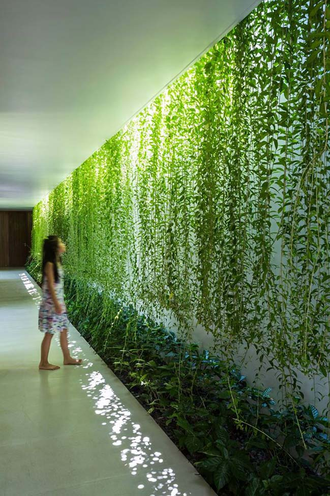 Mẫu biệt thự đẹp với thiết kế xanh ở Vũng Tàu