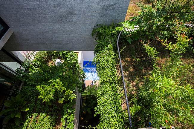 Mẫu nhà đẹp bê tông với những khu vườn đứng