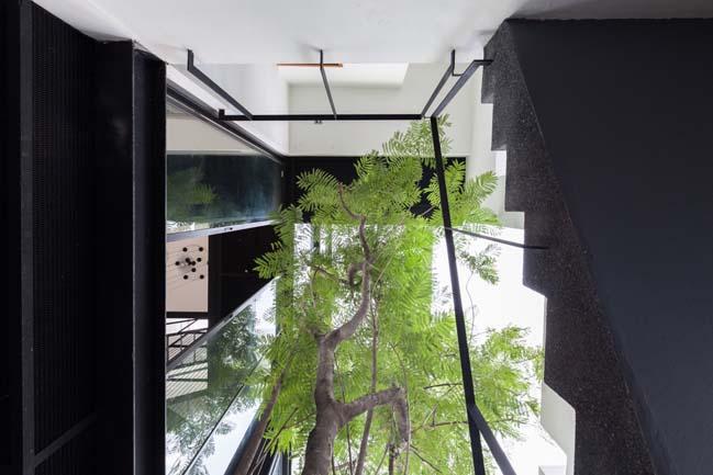 Mẫu nhà đẹp 4 tầng tràn ngập cây xanh và ánh sáng
