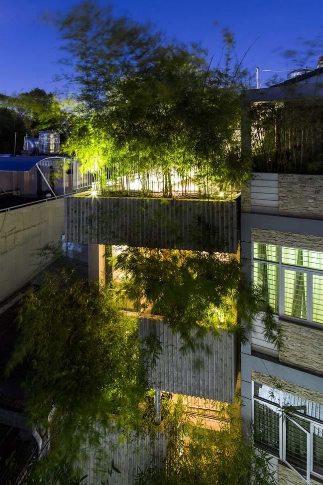 Mẫu nhà nhỏ đẹp với thiết kế xanh tại Tp.HCM