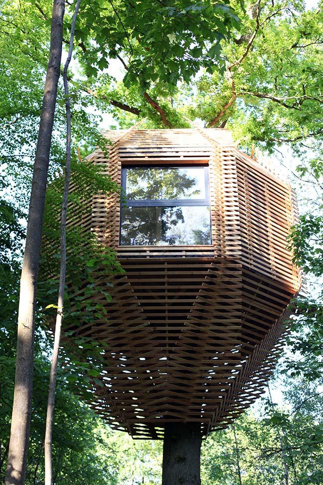 Kiến trúc nhà trên cây giữa rừng xanh tại Pháp