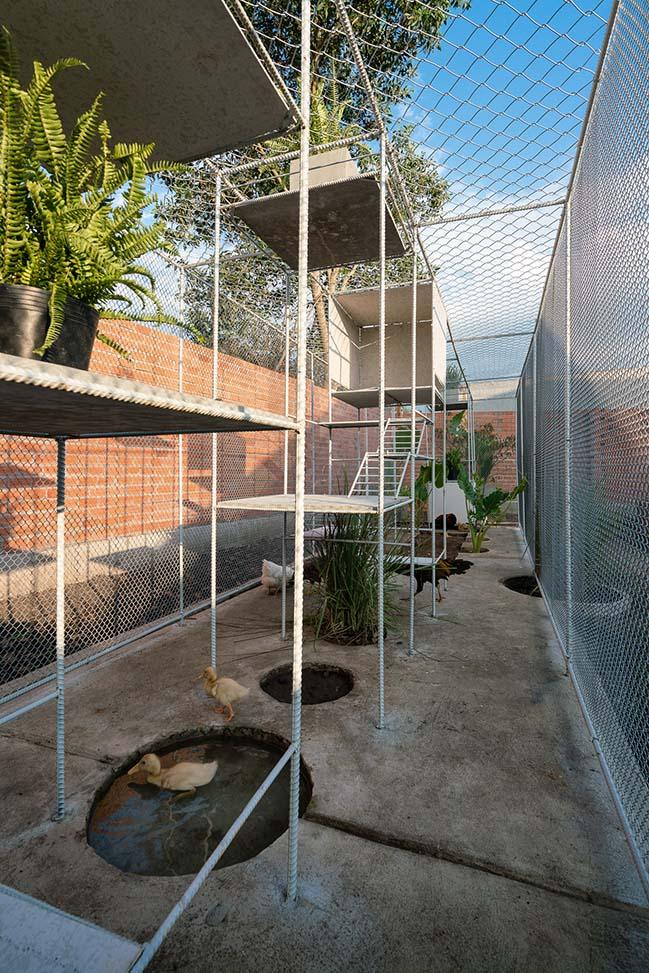 Chiêm ngưỡng thiết kế chuồng gà tại Long An