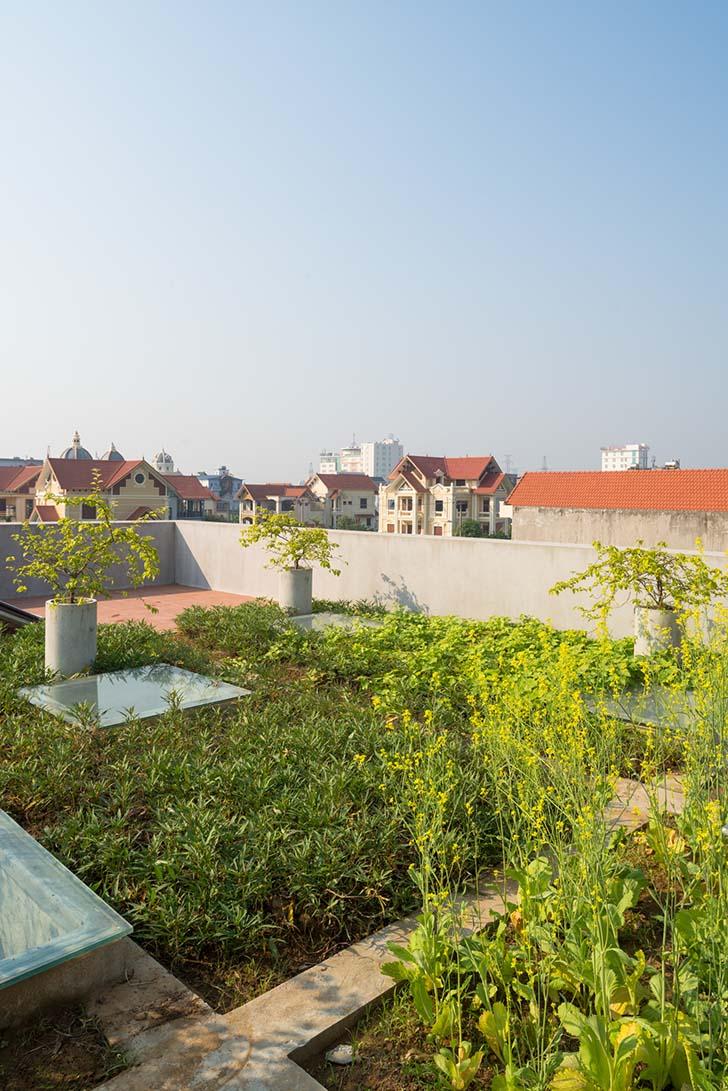 Nhà Ninh Bình - Khối bê tông mộc mạc giữa thành phố lâu đài