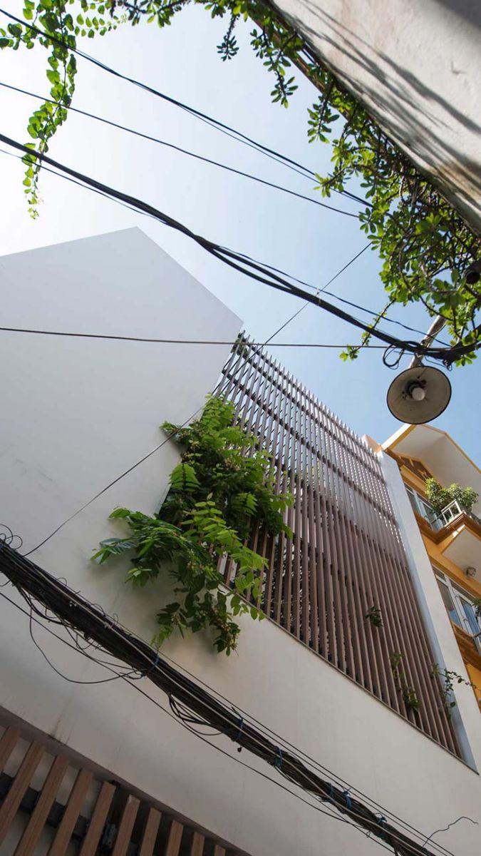 Thiết kế nhà đẹp 3 tầng tràn ngập ánh sáng và thiên nhiên tại Hà Nội